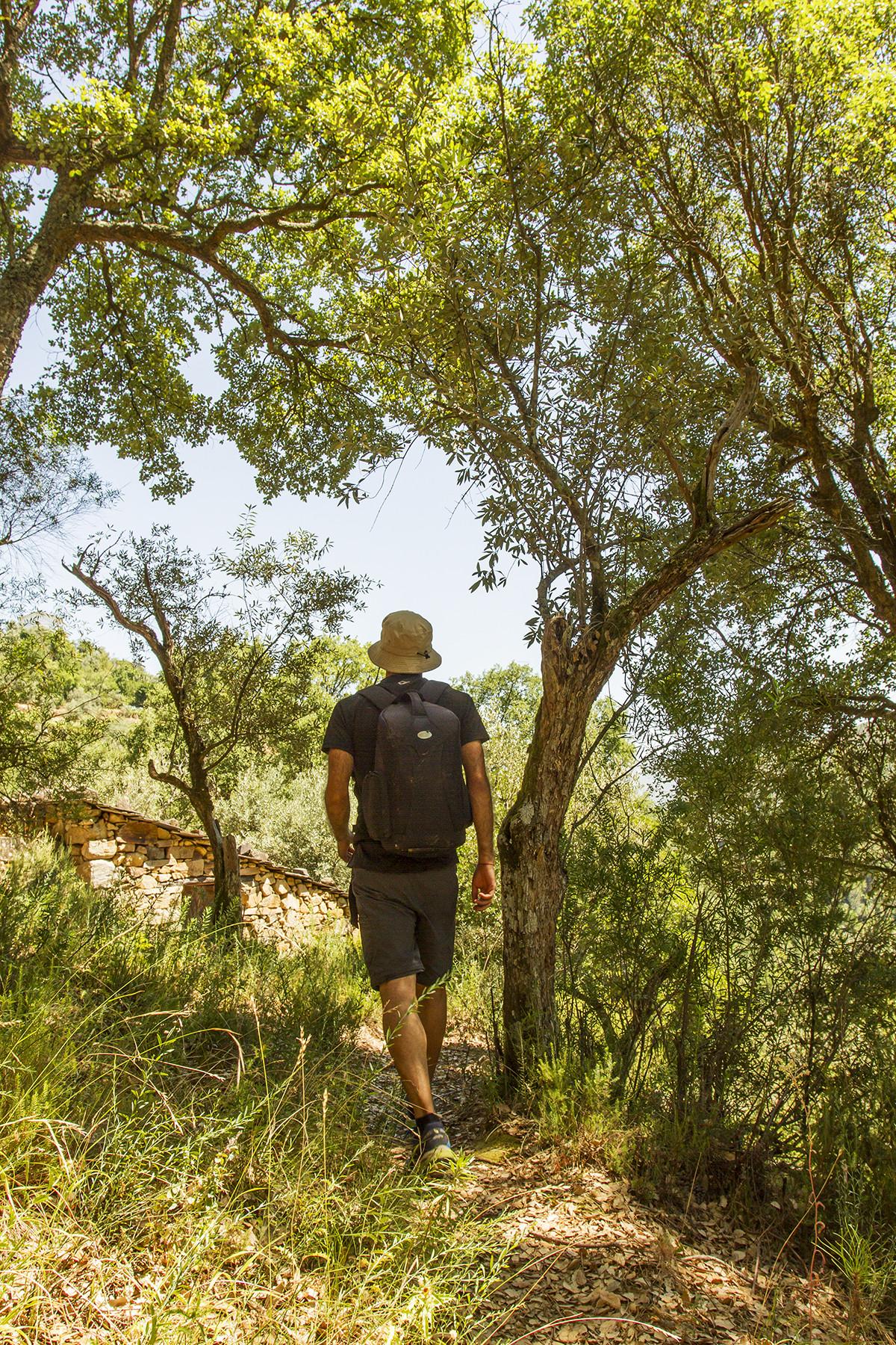 Percurso pedestre da Rota dos Socalcos
