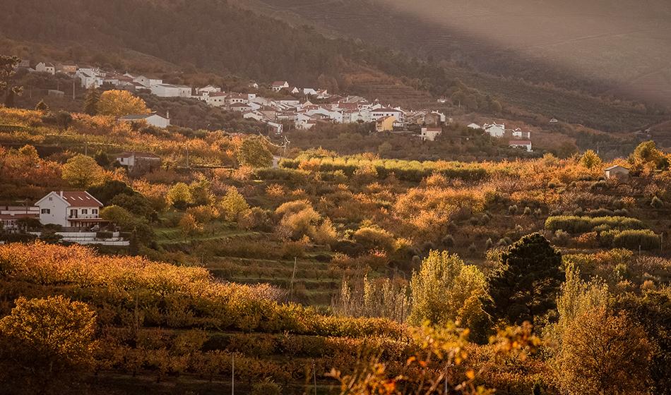 Paisagem de Outono na Serra da Gardunha