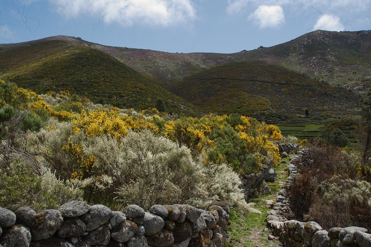 Alvoco da Serra, Aldeia de Montanha na Serra da Estrela