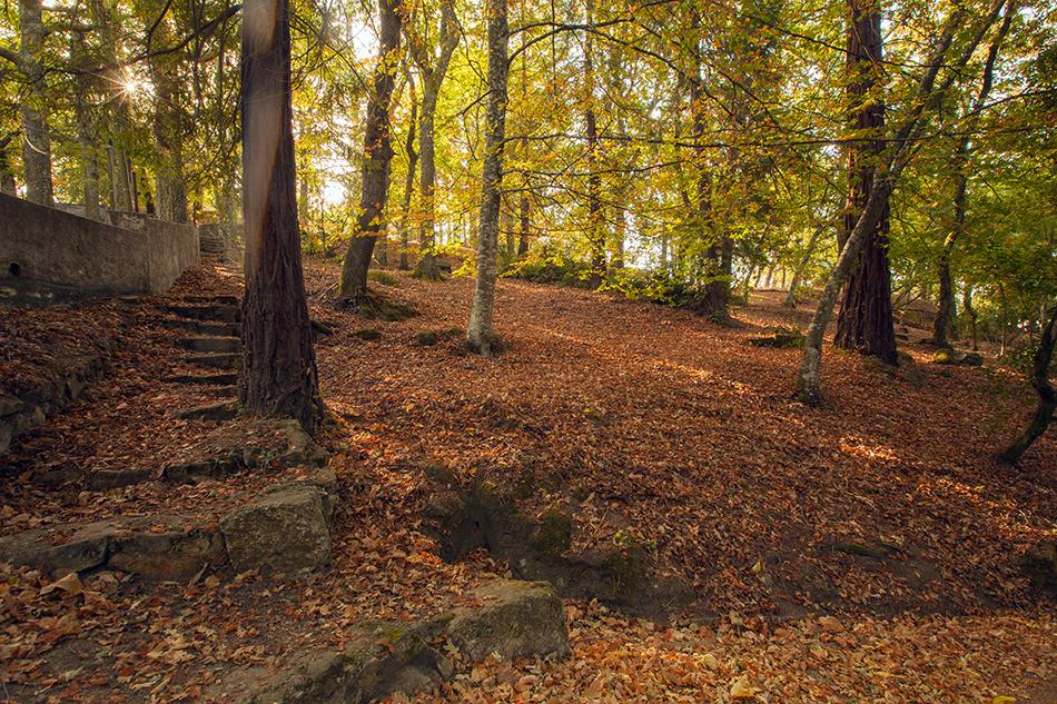 Paisagem de outono na Quinta da Cerca, em Gouveia